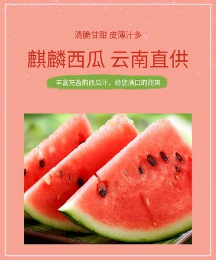 生鲜/水果蔬菜/详情页
