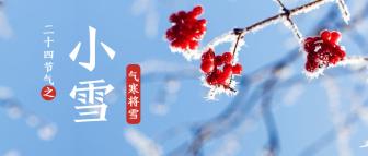 小雪/实景/公众号首图
