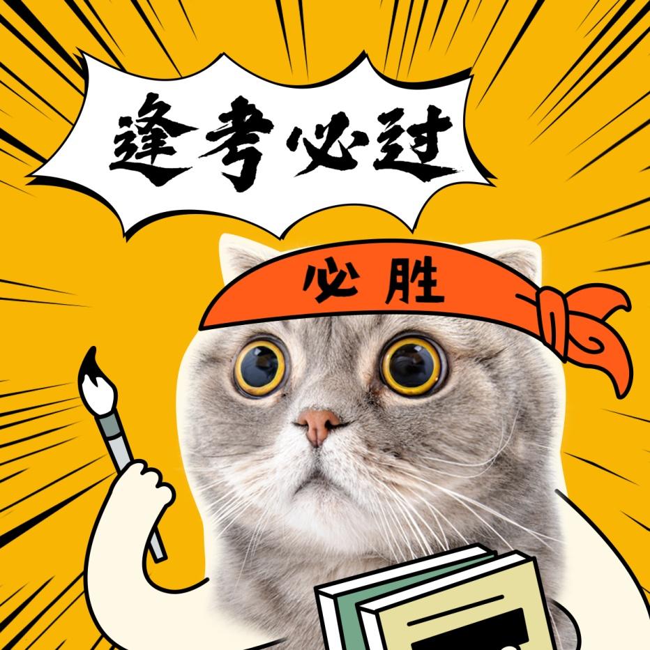逢考必过/期末考试/学霸猫咪方形海报