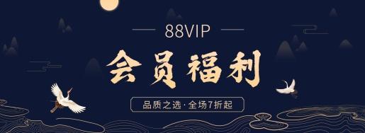 88会员VIP海报