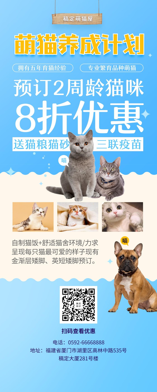 萌猫养成计划/折扣/可爱风/易拉宝