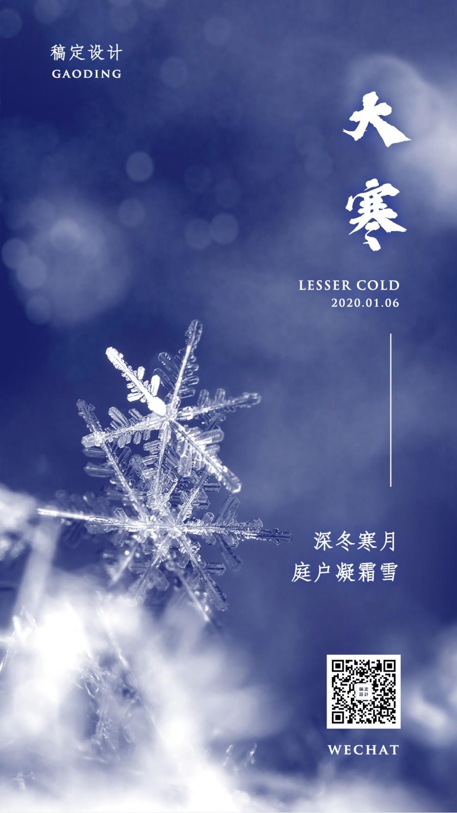二十四节气大寒实景冰晶雪花冬天手机海报