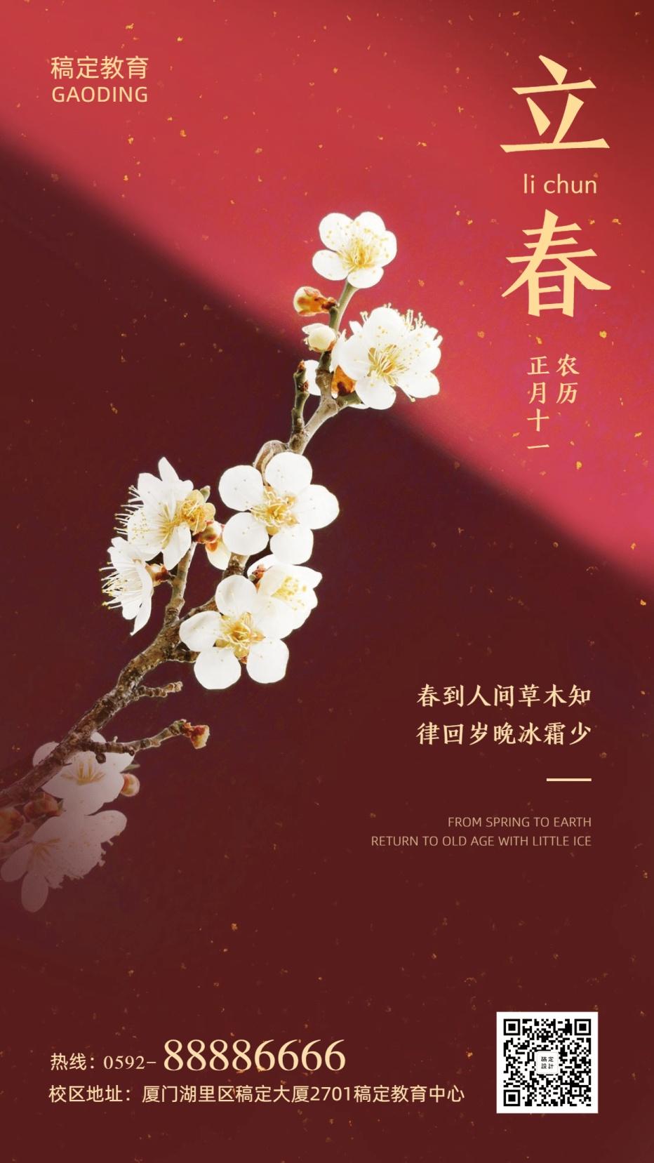 立春实景梅花喜庆手机海报