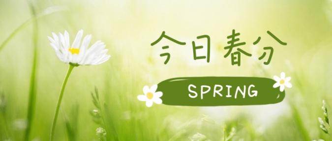 春分节气实景花朵小清新公众号首图