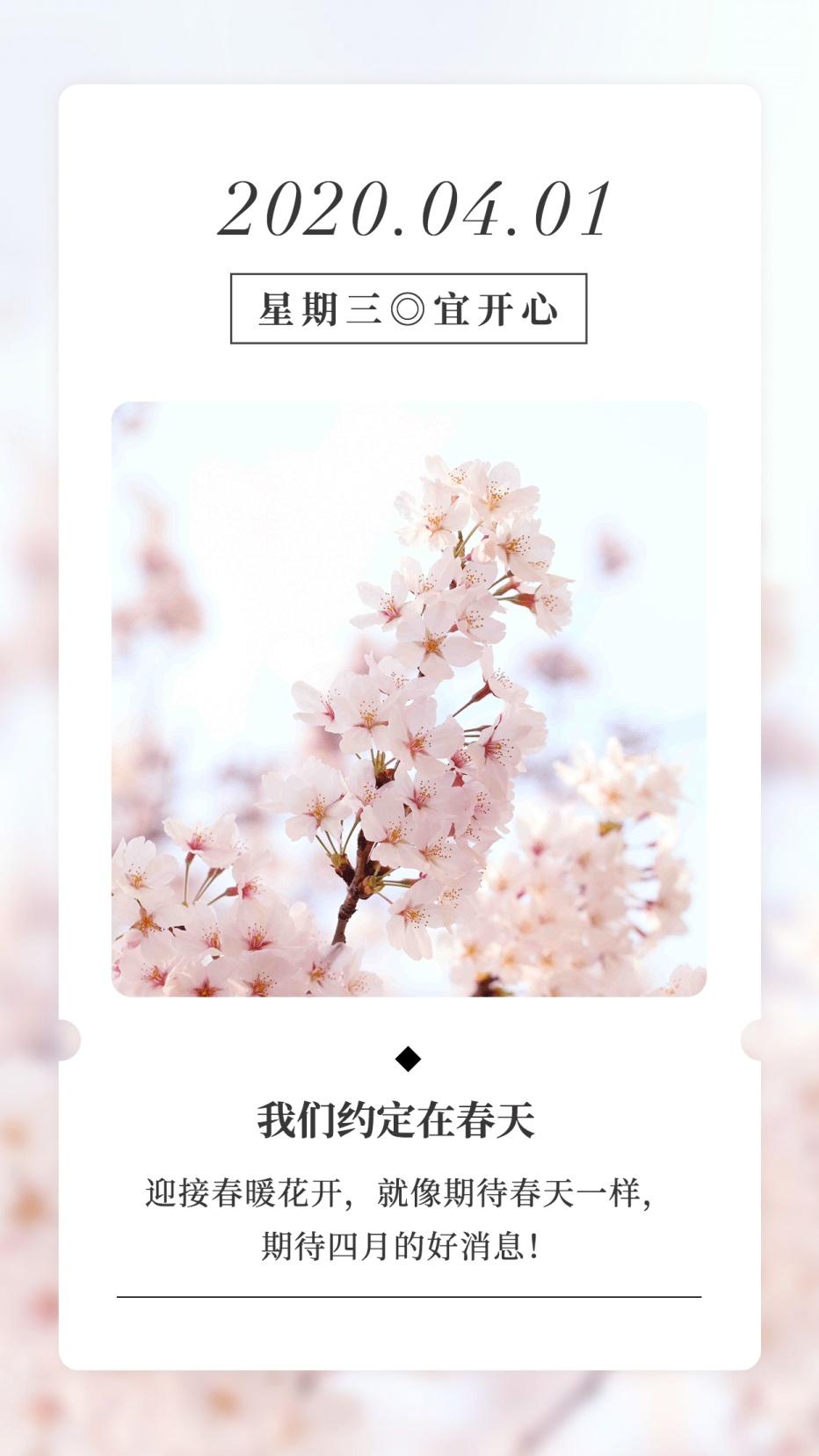 4月你好月初问候春天樱花手机海报