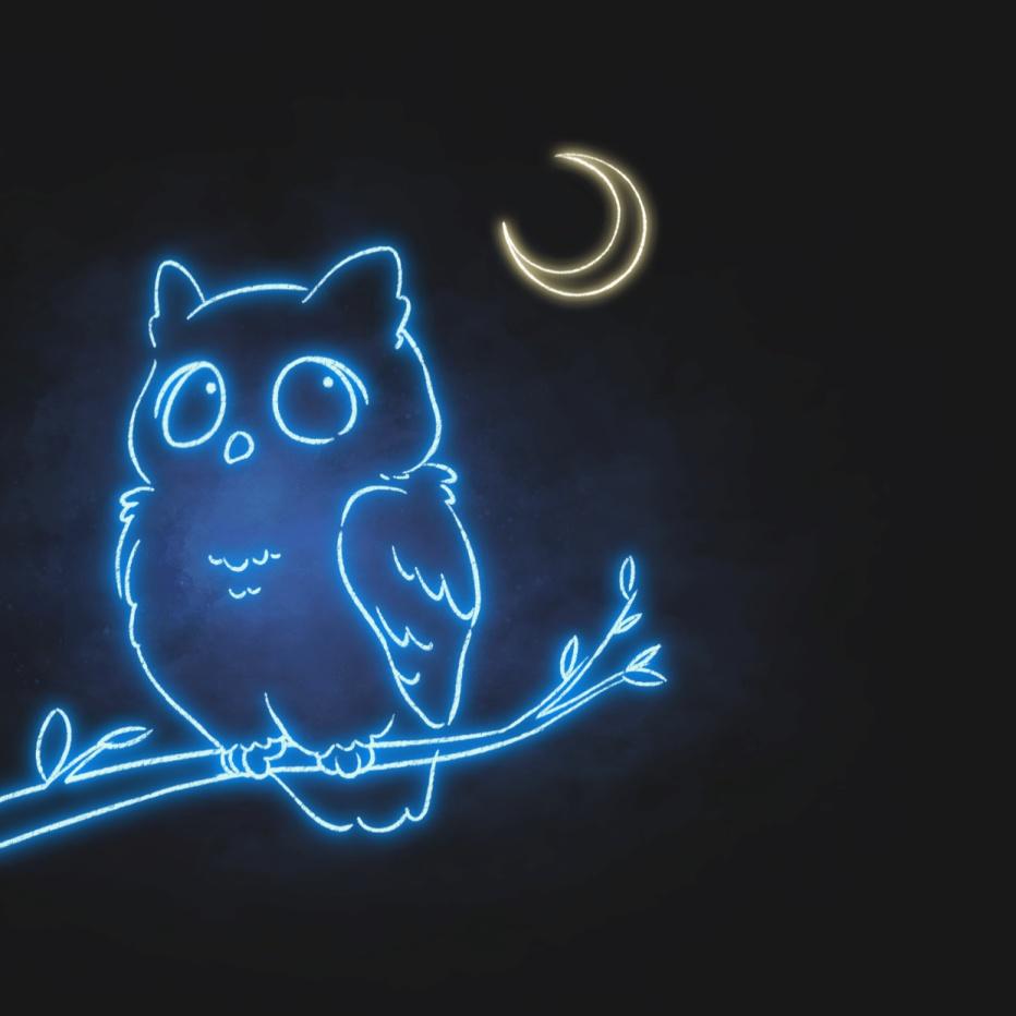深夜模式猫头鹰荧光朋友圈封面