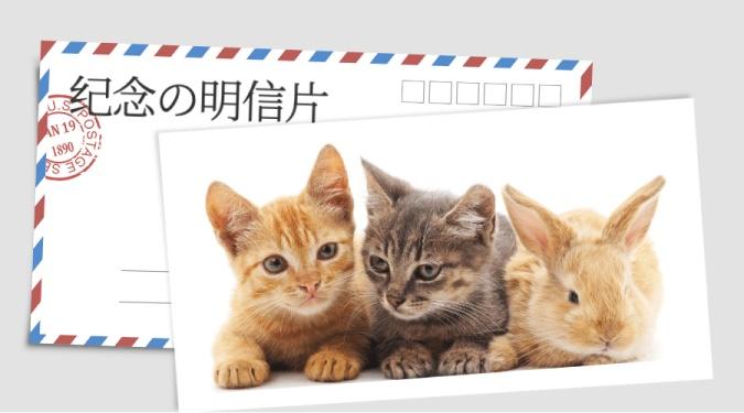 纪念明信片横版海报