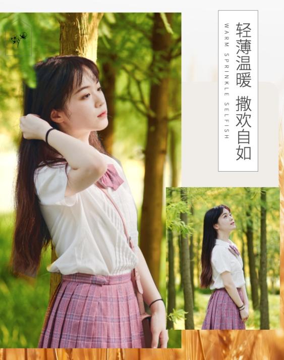 秋上新/简约清新风/新品女装海报