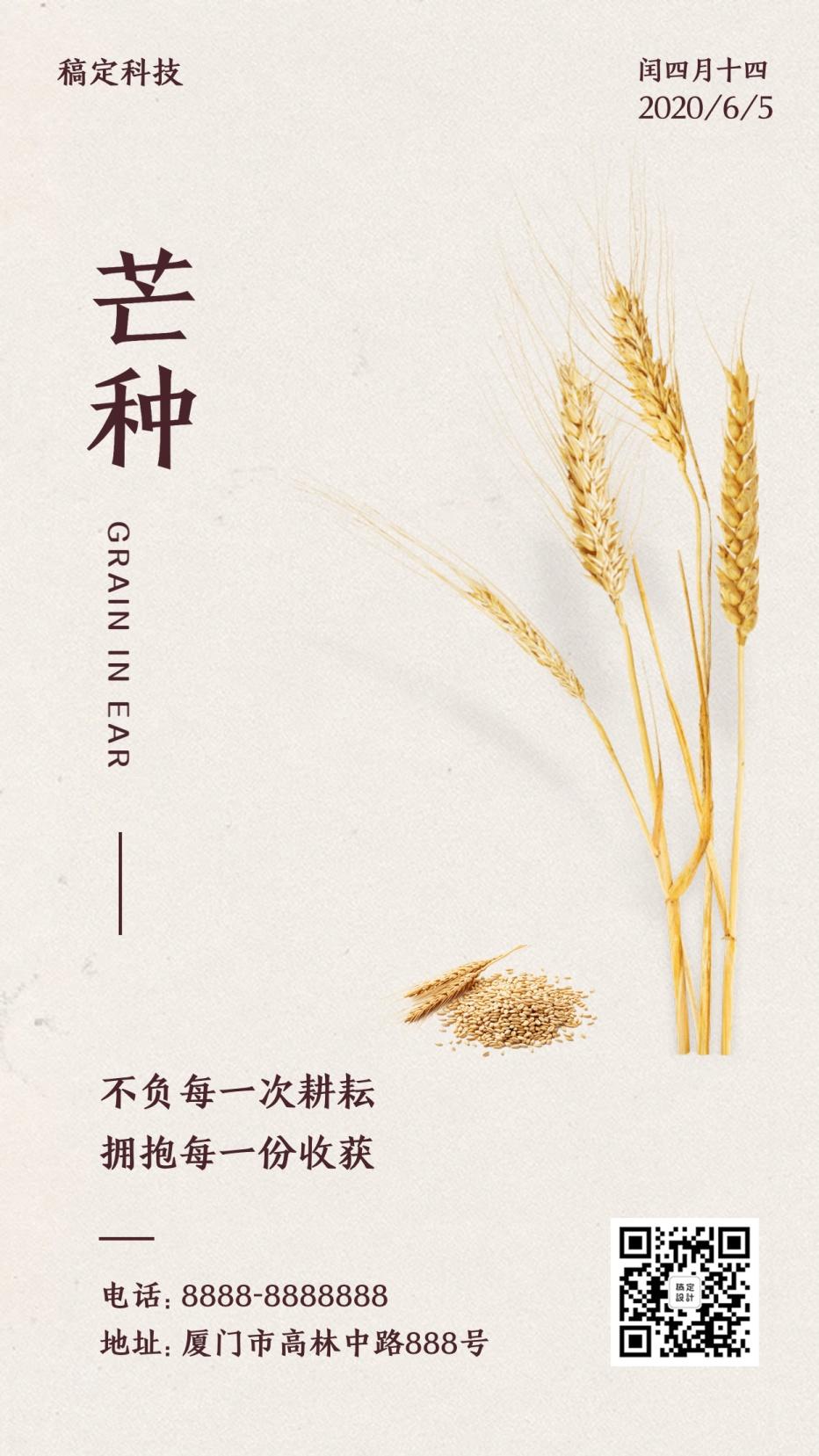芒种节气稻穗排版合成手机海报