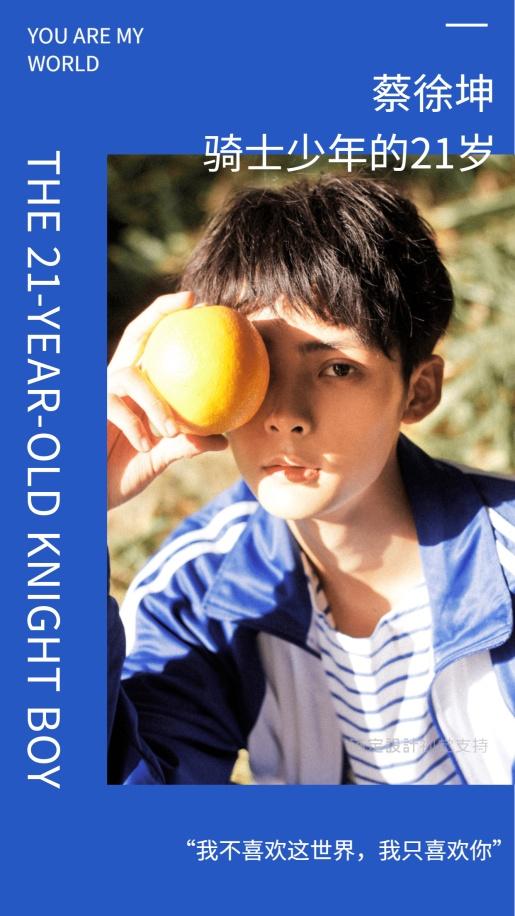 骑士少年的21岁  海报