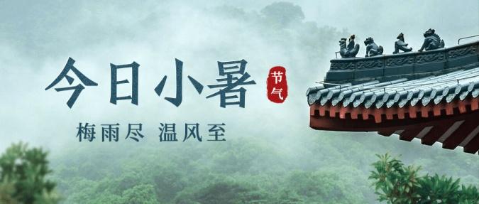 小暑节气中国风绿植实景公众号首图