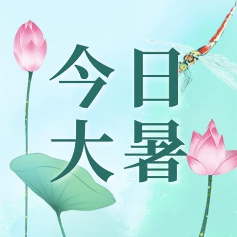 大暑节气莲花荷叶中式公众号次图