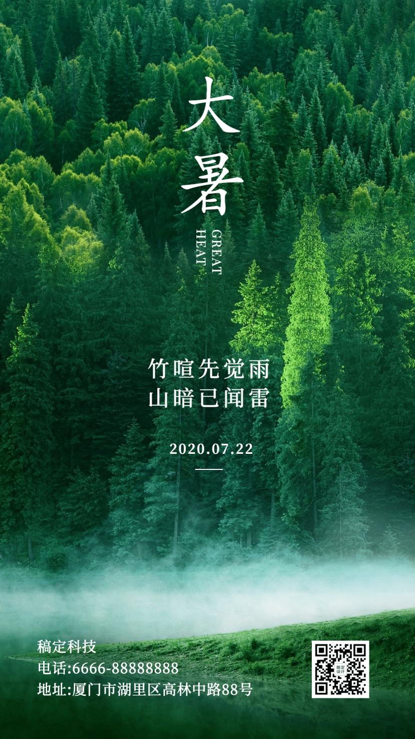大暑节气夏天绿植景色实景手机海报
