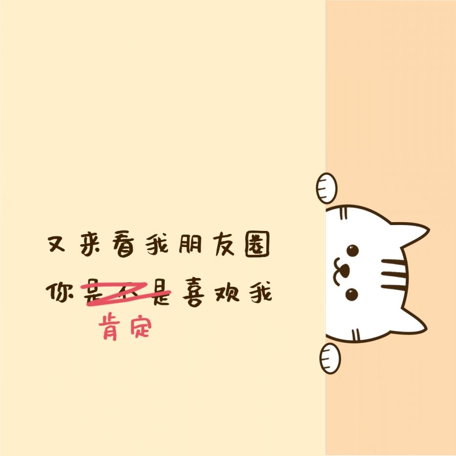 七夕小猫探头趣味朋友圈封面