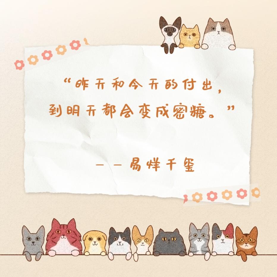 拼贴爱豆语录朋友圈封面明星应援