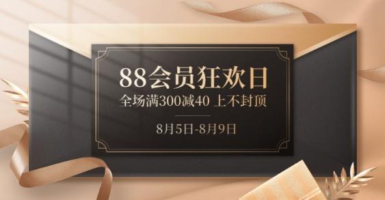 88会员节精致促销海报banner