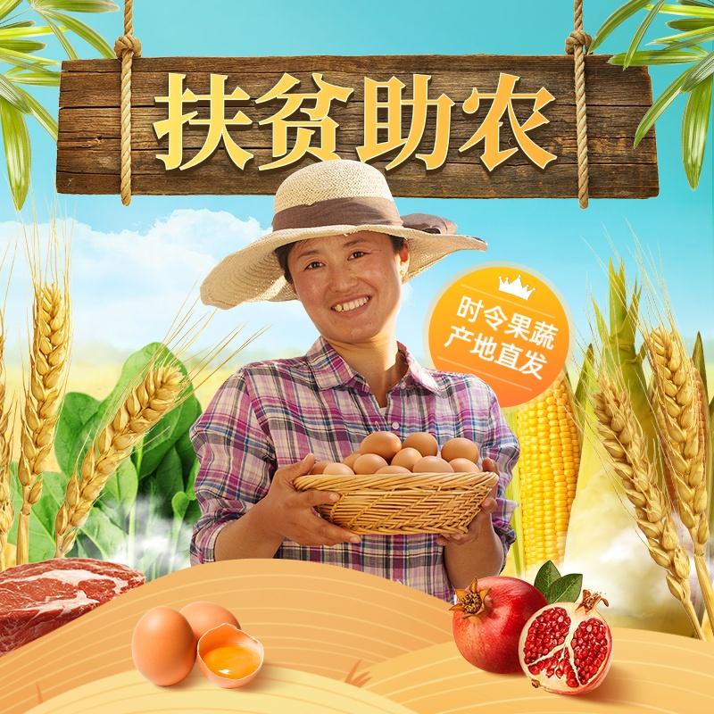 爱心助农食品生鲜直通车主图