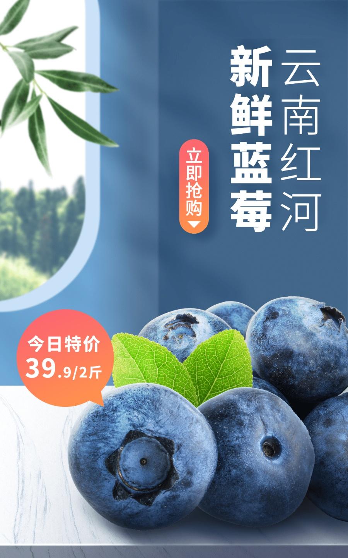 小程序商城水果蓝莓海报