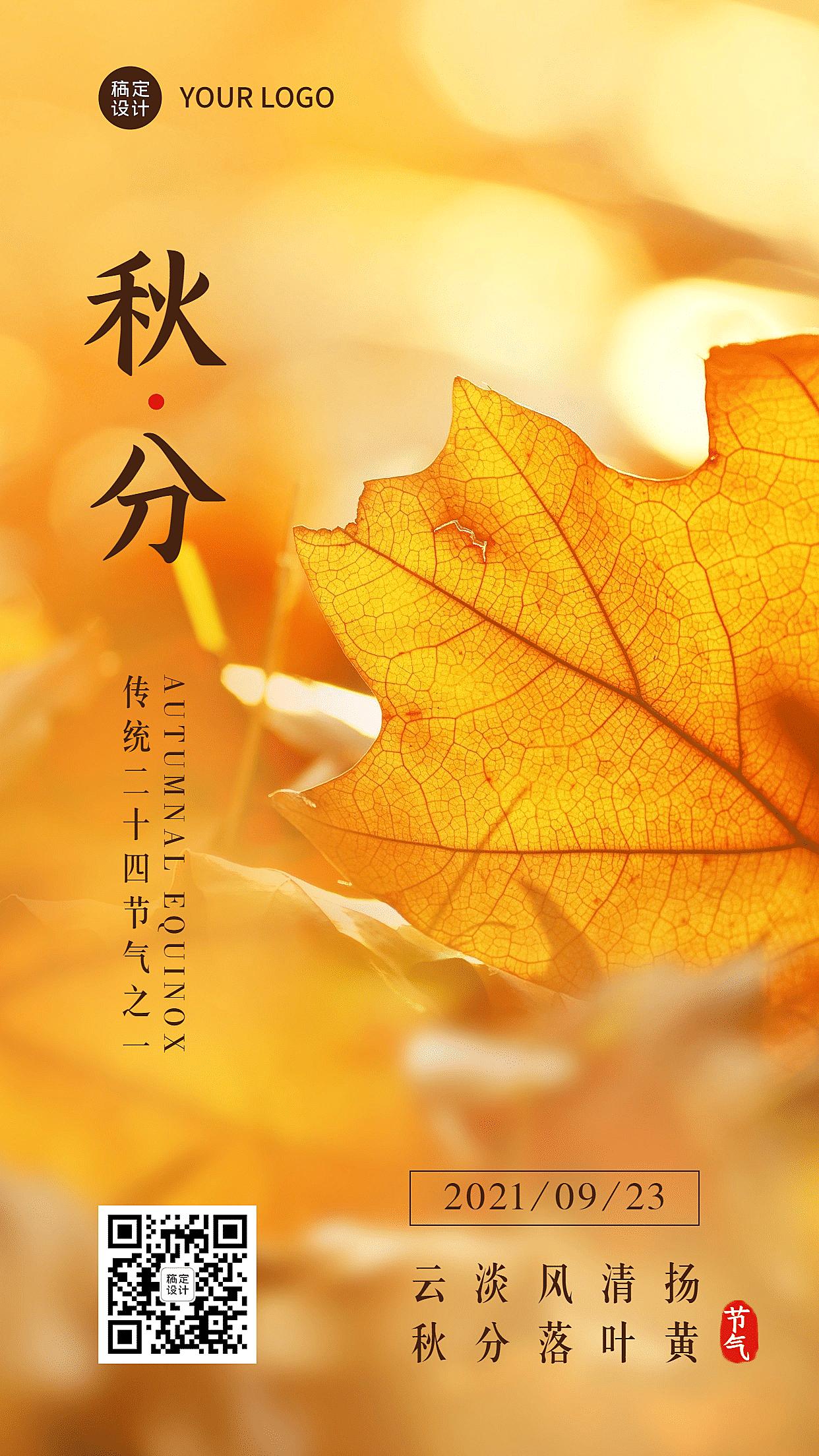 秋分节气实景枫叶光景手机海报