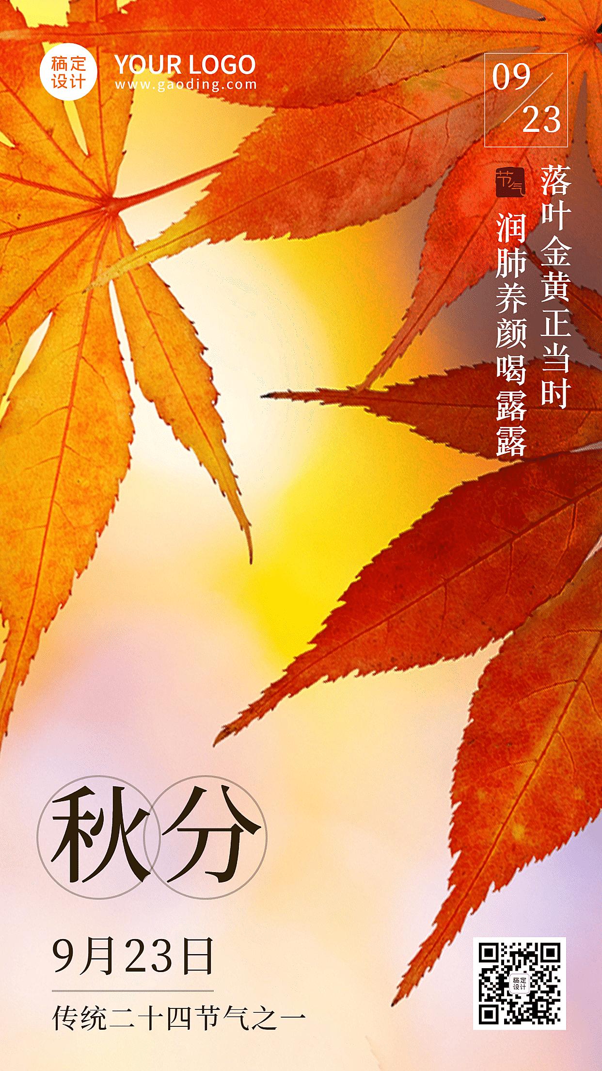 秋分节气清新实景枫叶手机海报