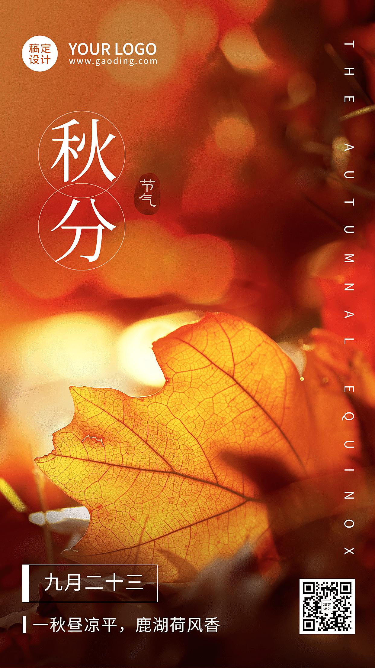 秋分节气实景落叶祝福手机海报