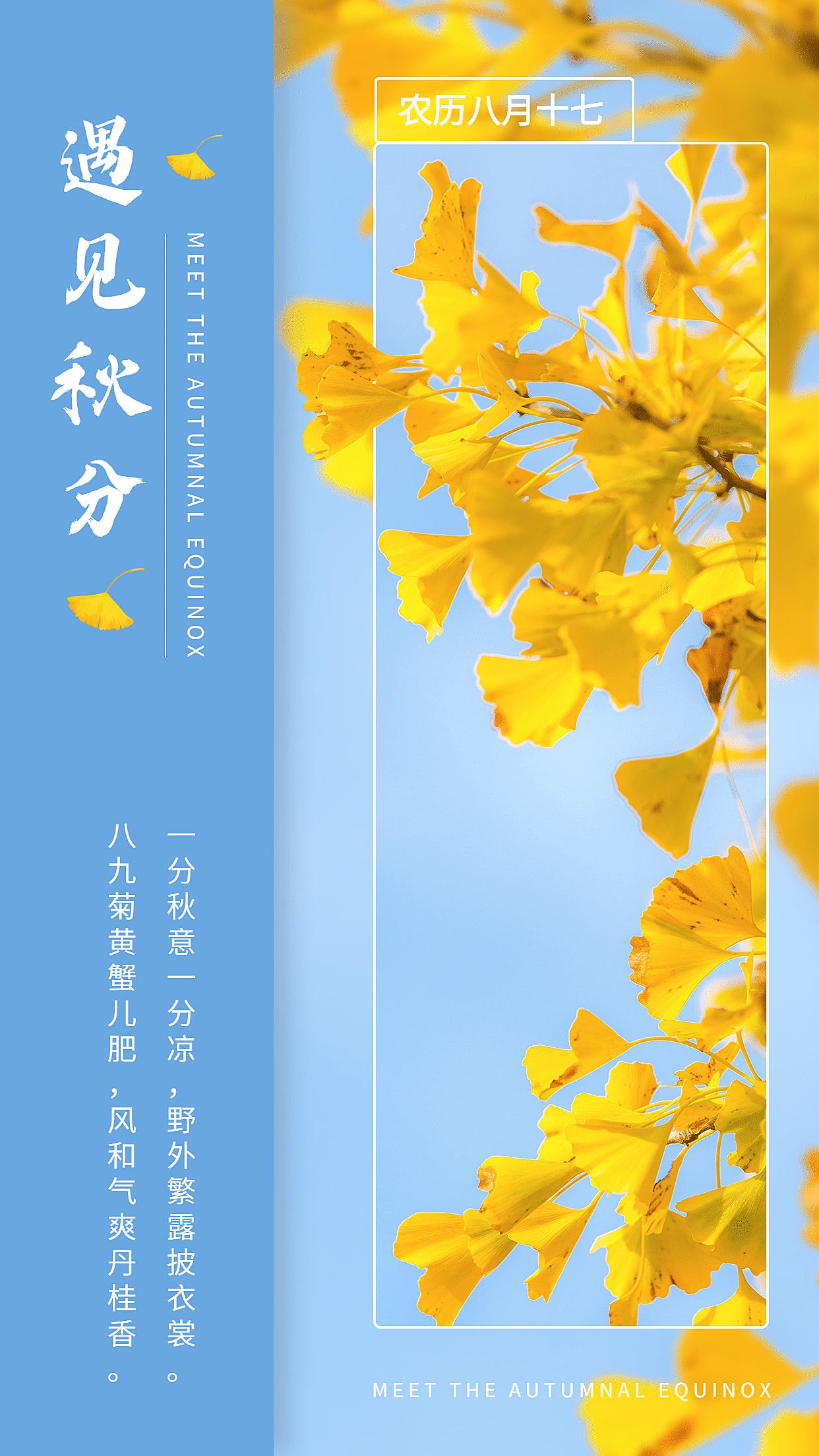 清新银杏实景秋分节气全屏祝福
