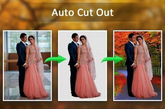 auto-cutout