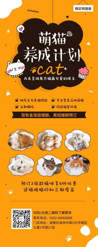 宠物/萌猫养成/易拉宝