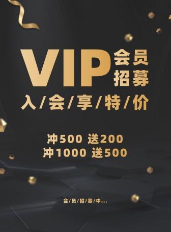 门店/简约奢华/会员招募/张贴海报