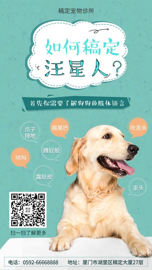 宠物狗狗/可爱清新/知识科普/手机海报