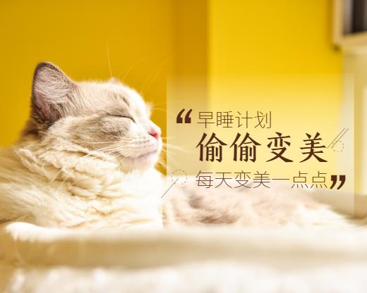 萌宠/猫咪/早睡变美美容计划小程序封面