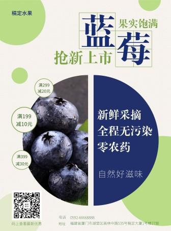 餐饮美食/清新/水果促销/张贴海报