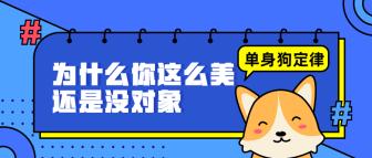 单身狗定律/简约/手绘/公众号首图