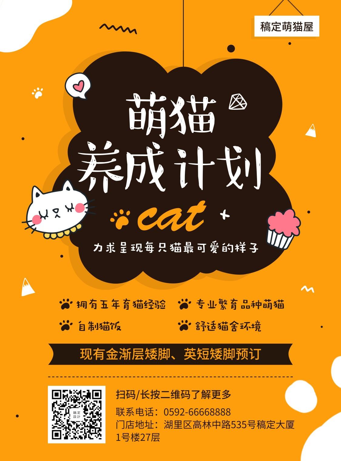 宠物/萌猫养成计划/项目介绍/张贴海报