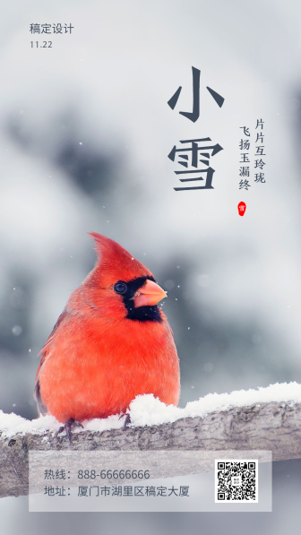 小雪/节气/实景/手机海报