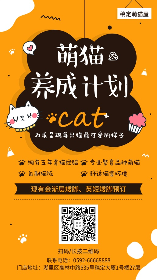 宠物/卡通可爱/项目介绍/手机海报