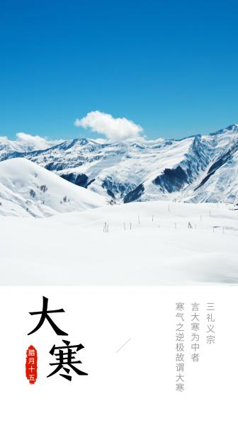 大寒节气换图手机海报