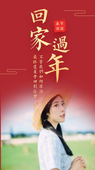 春节回家过年手机海报