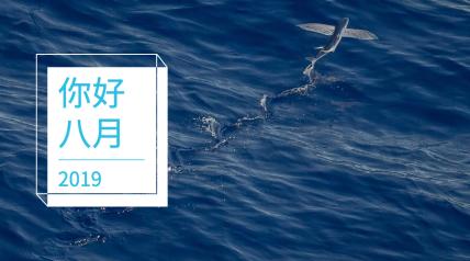 你好八月HELLO大海实景小清新日系横版海报