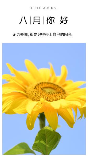 七月再见八月问候向日葵手机海报