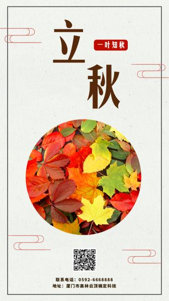 立秋/秋天/实景枫叶手机海报
