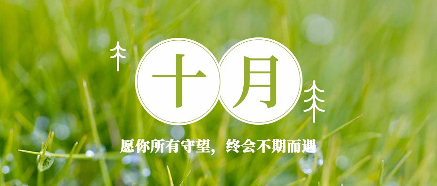 十月月初问候小清新植物公众号首图