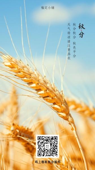 秋分/清新实景/提示问候/手机海报