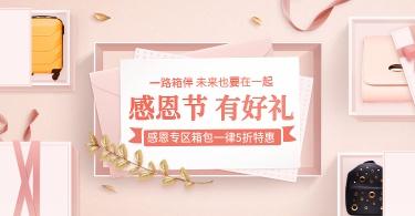 感恩节/温馨/简约/箱包/海报banner