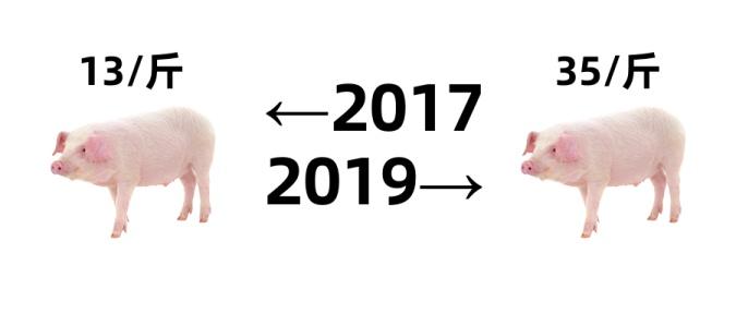 2017年2019年对比猪肉涨价创意公众号首图