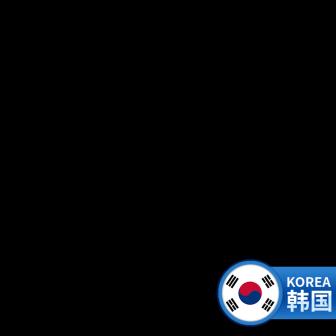 海外代购\韩国主图图标
