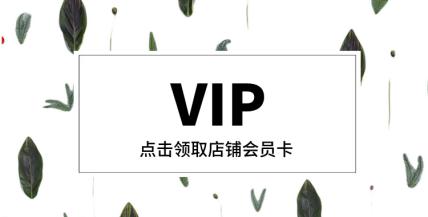 通用·VIP会员卡