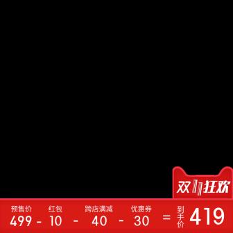 双11价格公式主图图标