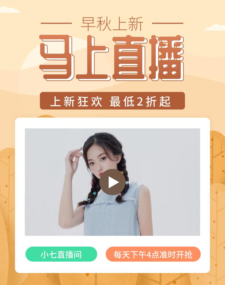 秋上新/淘宝直播/女装海报