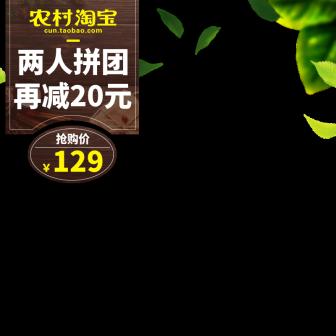 农村淘宝清新主图图标